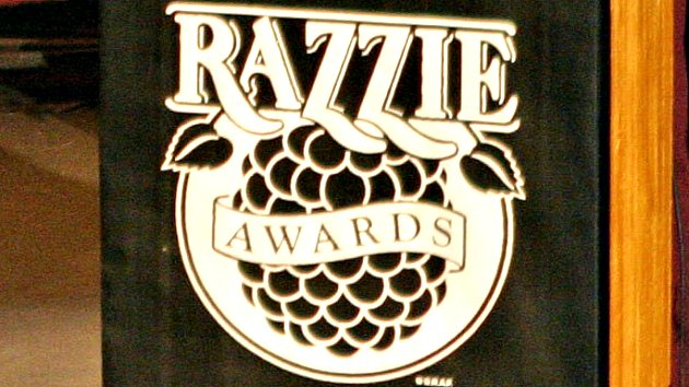 """27th Annual Razzie Awards - Worst Picture - """"Basically, It Stinks, Too"""""""