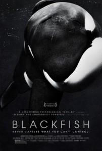 blackfish-poster